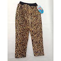 Лосины для детей подростковые велюровые леопард