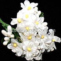 """Цветок """"Мелкоцвет незабудка"""" (цена за букет из 6 шт). Цвет - белый"""