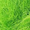 Сизаль, 20 г, цвет салатовый
