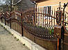 Кованный забор (1110)