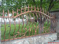 Кований паркан (1660)