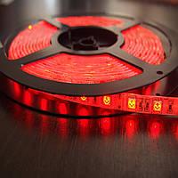 Лента светодиодная SMD3528 120LEDх4LM 9,6W красная влагозащищенная