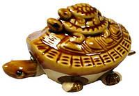 Статуэтка черепаха глина мал.