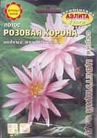 Лотос Розовая Корона