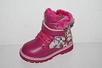 Обувь оптом для девочек. Зимние детские ботиночки от фирмы Y.Top H503-5 (8пар, 23-28)