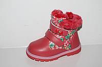 Обувь оптом для девочек. Зимние детские ботиночки от фирмы Y.Top H504-2 (8пар, 23-28)