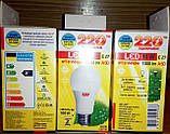 Лампа LED светлодиодная 10 Вт, 10W 1000Lm Е27 шар, фото 2
