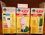 Лампа LED светлодиодная 10 Вт, 10W 1000Lm Е27 шар, фото 5