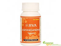 Ашваганда, Ашвагандха,Джива Аюрведа 120 таб., Ashwagandha, Jiva Ayurveda, избавит от переутомления, вернёт Вам силы, Аюрведа Зде