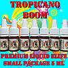 Премиум жидкость для электронных сигарет eLife TROPICANO BOOM Small Package 5ml