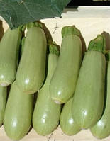 Семена кабачка Асма F1 (2500 с) ранний, фото 1
