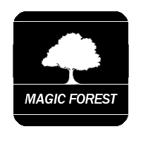 Magic Forest(Украина)
