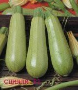 Семена кабачка Сцилли F1 (1000 с), фото 1