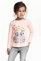 Реглан-топ с длинным рукавом Rabbit на девочку 2-4, 4-6, 6-8 лет  H&M (Англия)