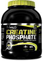Креатин BioTech Creatine Phosphate (300 g)