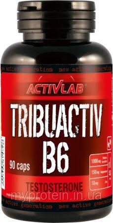 Activlab Трибулус Tribuactiv B6 (90 caps)