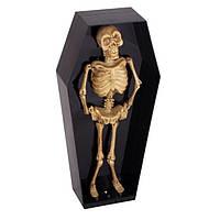 Танцующий скелет в гробу