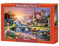 """Пазлы Касторленд на 3000 деталей. """"Размышления о мире"""". Быстрая доставка. Производство Польша."""