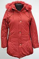 Зимние женские куртки оптом со склада в Хмельницком
