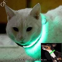 Светящийся ошейник для кошек и небольших собак - 25 см.