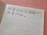 Зошит для написання ієрогліфів. Клітка 13 мм з межею. 2688 клітин, фото 4