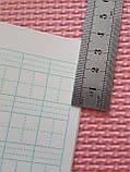 Тетрадь для написания иероглифов. Клетка 14 мм с пунктиром и расширенным полем для пиньинь. 2016 клеток, фото 3