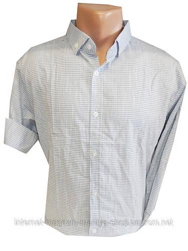 Рубашка мужская узкая полоска трансформер