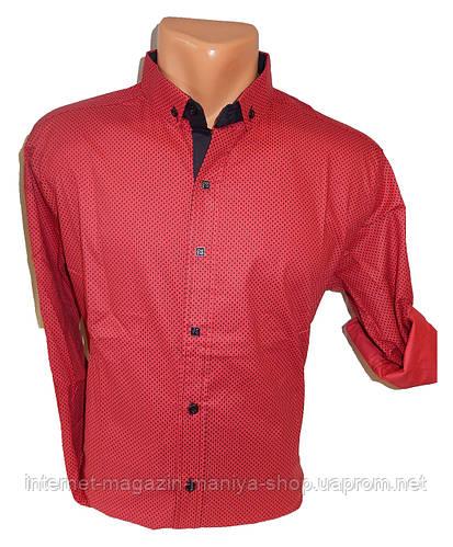 Рубашка мужская трансформер узор