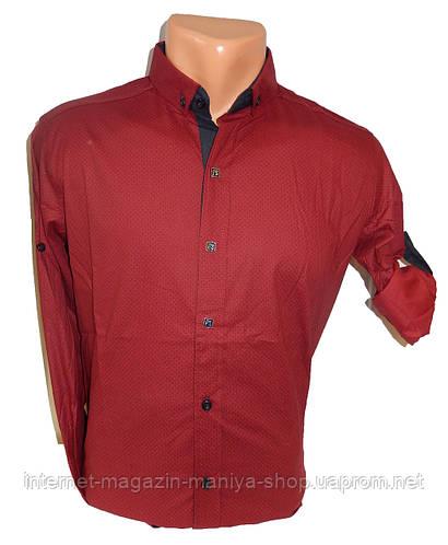 Рубашка мужская трансформер мелкий горох