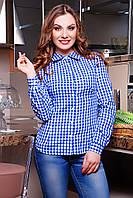 Женская синяя рубашка в белую клетку блуза Шериф д/р