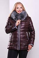 Куртка -1