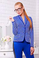 Короткий женский пиджак в клетку с длинным рукавом синий электрик Шанэль-шаль