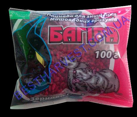Багира зерно от крыс и мышей 100 г, оригинал, фото 2