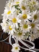 Свадебный букет из ромашек(хризантема)