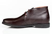 Ботинки Carpe Diem 02 мужские