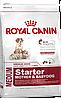 Royal Canin Medium Starter 1 кг для щенков средних пород