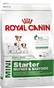 Royal Canin Mini Starter 1 кг для щенков маленьких пород