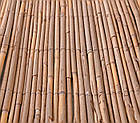 Забор из камыша, 1 х 6 м (Камышовый забор), фото 3