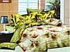 """Комплект постельного белья """"Viluta"""" ранфорс полуторный Вилюта № 9984"""