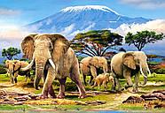 """Пазлы Castorland C-103188 """"Утром Килиманджаро"""" на 1000 элементов (C-103188), фото 2"""