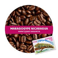 Марагоджип Никарагуа 100% арабика