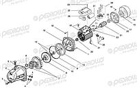 Ремонт насосов PEDROLLO ( центробежных, глубинных, дренажно-фекальных, многоступенчатых)