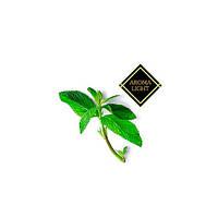 Жидкость для электронных сигарет Ментол без никотина (Creame de Menthe) Aroma Light 30 мл