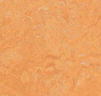 Натуральный линолеум marmoleum sport 83208