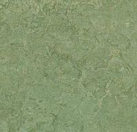 Натуральный линолеум marmoleum sport 83212