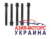 Болт ГБЦ  Chery A13 (ZAZ FORZA) 477F-1003051