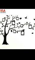 Наклейка на стену фоторамка дерево птицы