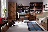 Стол письменный JBIU_2s_120 Индиана  (BRW/БРВ Украина) 1200х650х780мм, фото 4