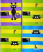"""Тетрадь-Блокнот В-5, 60л, клетка, """"CRAZY CAT"""", спираль"""