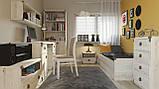 Стол письменный JBIU_2d2s_140 Индиана  (BRW/БРВ Украина) 1400х650х780мм, фото 8